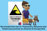 CAMPAÑA TSUNAMI