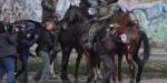 caballo herido, policia montada